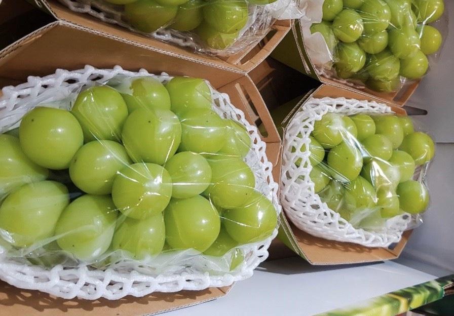 Top 12 loại trái cây giảm cân thần thánh giúp body thon gọn, đẹp da hiệu quả, an toàn và nhanh chóng