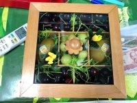 Hộp quà tặng trái cây - FSNK91