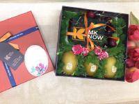 Quà tặng giữa mùa dịch cho nhân viên Work From Home - FSNK260