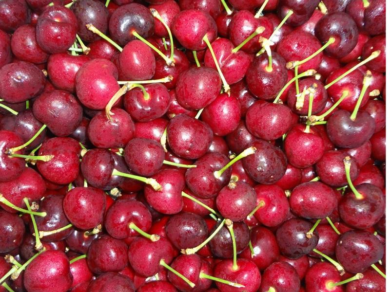 Vì sao Cherry đắt nhưng vẫn được dân sành ăn ưa chuộng?