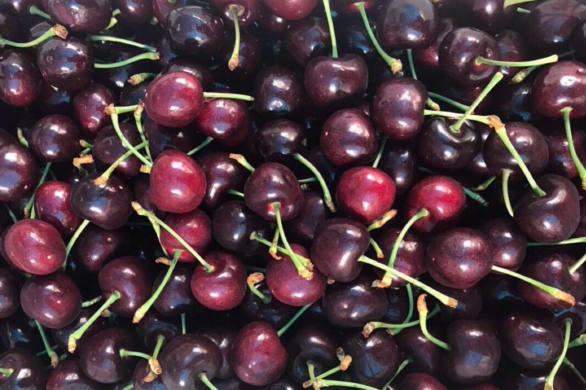 Cherry New Zealand size 28-30mm